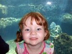 Lily at the Atlanta Aquarium