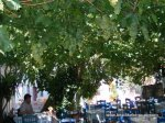 Lunch at Yanni's Taverna, Halki